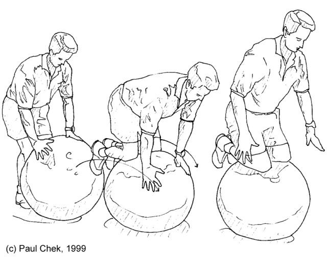Kneeling on Swiss Ball