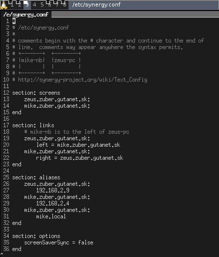 Synergy Linux server config