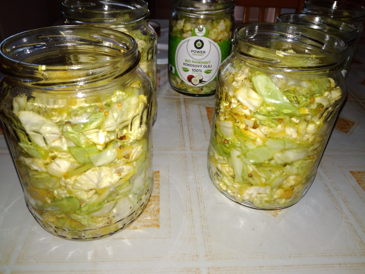 My first fermented food prep attempt